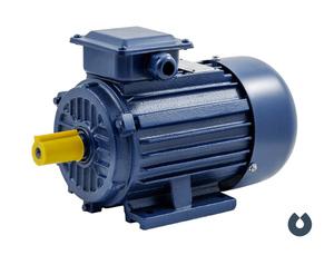 Электродвигатель БЭЗ АИP 80B2 IM1081